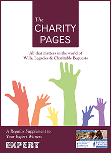 The Charity Pages Issue 7