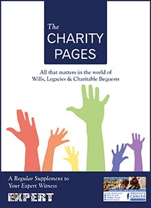 The Charity Pages Issue 8