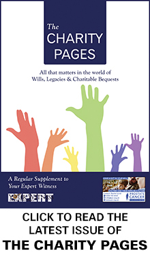 The Charity Pages Issue 9