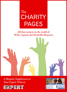 The Charity Pages Issue 11