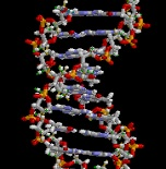 Illustration of DNA double-helix for Your Expert Witness story